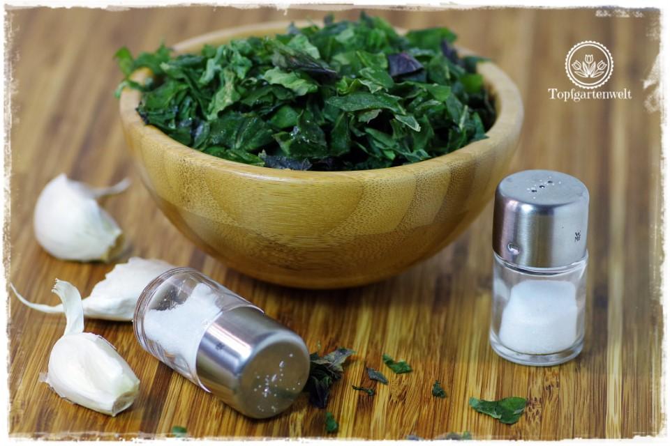 Basilikumpaste einkochen als Grundlage für Pesto Genovese - Foodblog Topfgartenwelt
