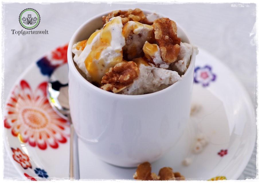 Frozen Yogurts mit wenig Zucker dafür Honig und Walnüsse - Foodblog Topfgartenwelt