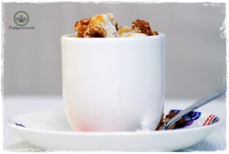 Frozen Yogurts selber machen ohne viel Aufwand - Foodblog Topfgartenwelt