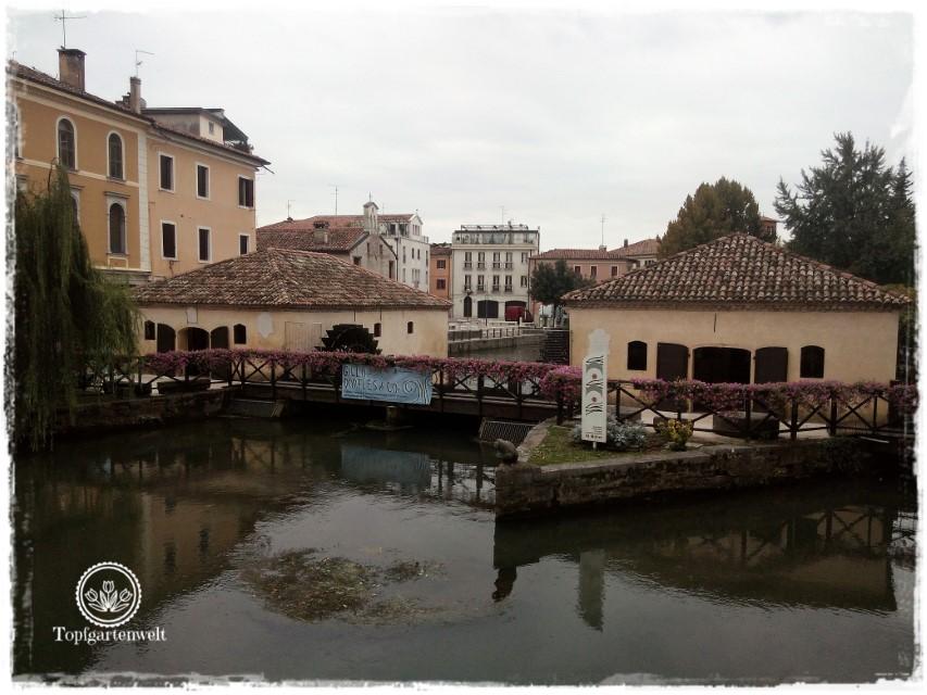 Wasserstraßen von Portogruaro - Gartenblog Topfgartenwelt