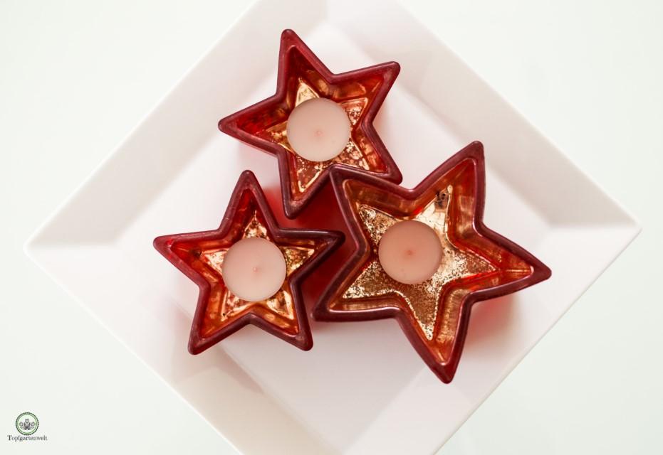 rote sternförmige Teelichthalter für Weihnachten - Blog Topfgartenwelt