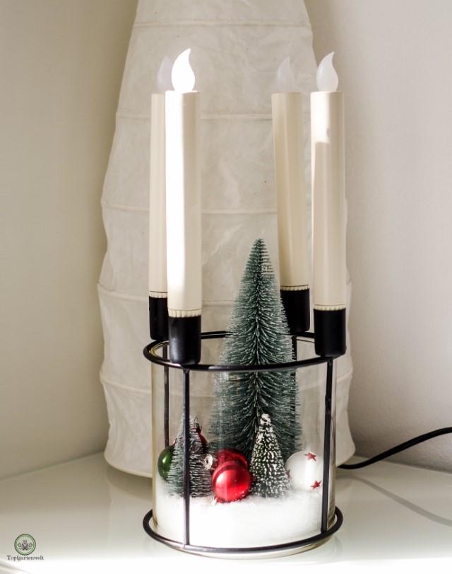 moderner Adventkranz Kerzengesteck für Weihnachten - Blog Topfgartenwelt