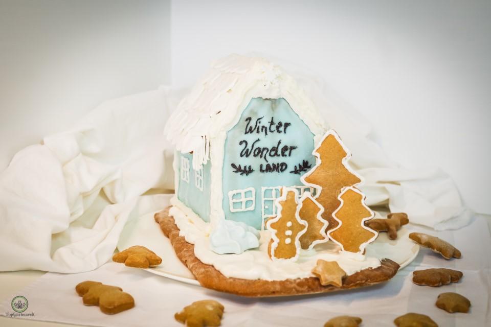 Lebkuchenhaus selber machen mit Zuckerguss aus Cake Lettering!