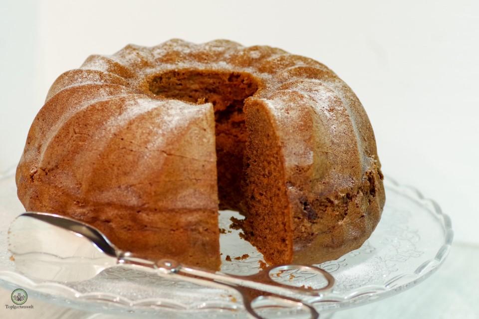 Saftiger Schoko-Gugelhupf aus Dr. Oetker Schokoladenkuchen!
