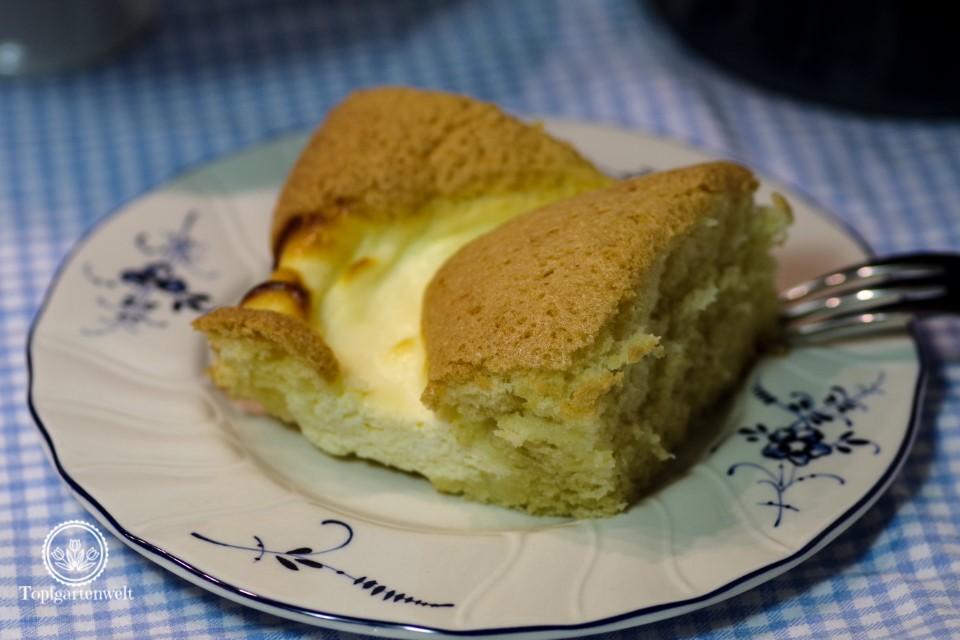Wirklich toller Topfengitterkuchen (Blechkuchen) aus Kuchen backen mit Christina!