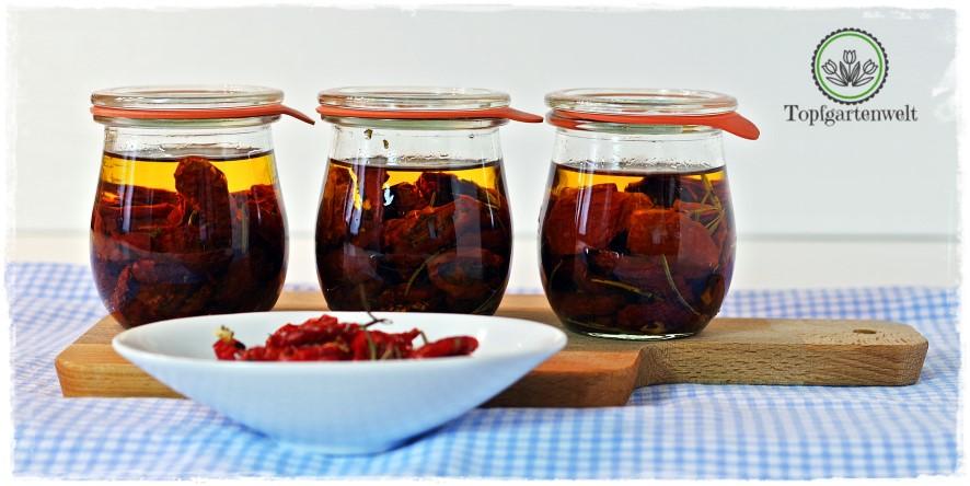 Getrocknete Tomaten in Öl einlegen | Antipasti einkochen!