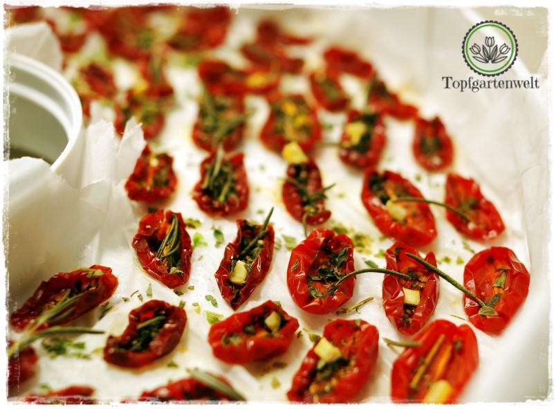 Tomaten im Dörrautomat - Foodblog Topfgartenwelt