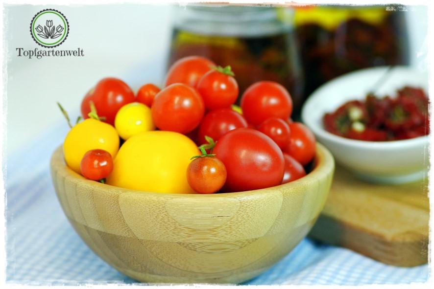 Antipasti selber machen aus Tomaten - Foodblog Topfgartenwelt