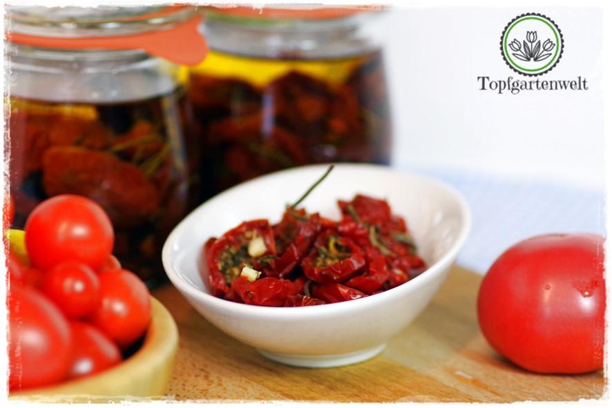 halbgetrocknete Tomaten selber in Öl einlegen und haltbar machen - Foodblog Topfgartenwelt
