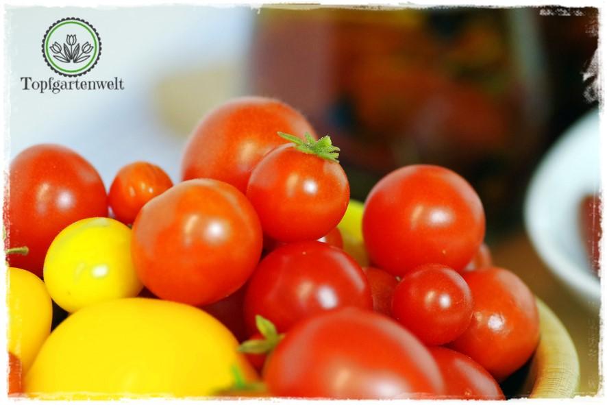 Tomaten in Öl einlegen - Foodblog Topfgartenwelt