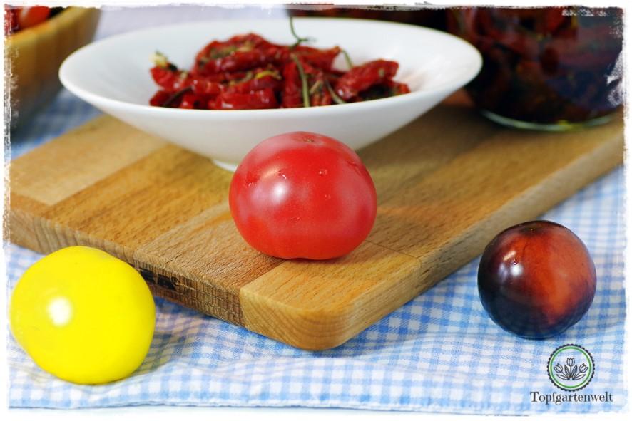 getrocknete Tomaten für Antipasti - Foodblog Topfgartenwelt