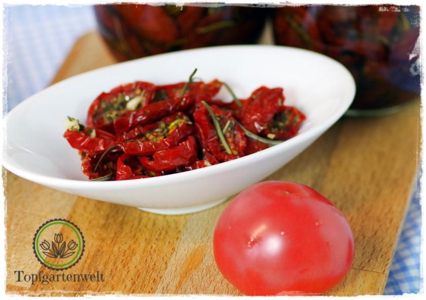 eingelegte Tomaten in Öl selber herstellen - Foodblog Topfgartenwelt