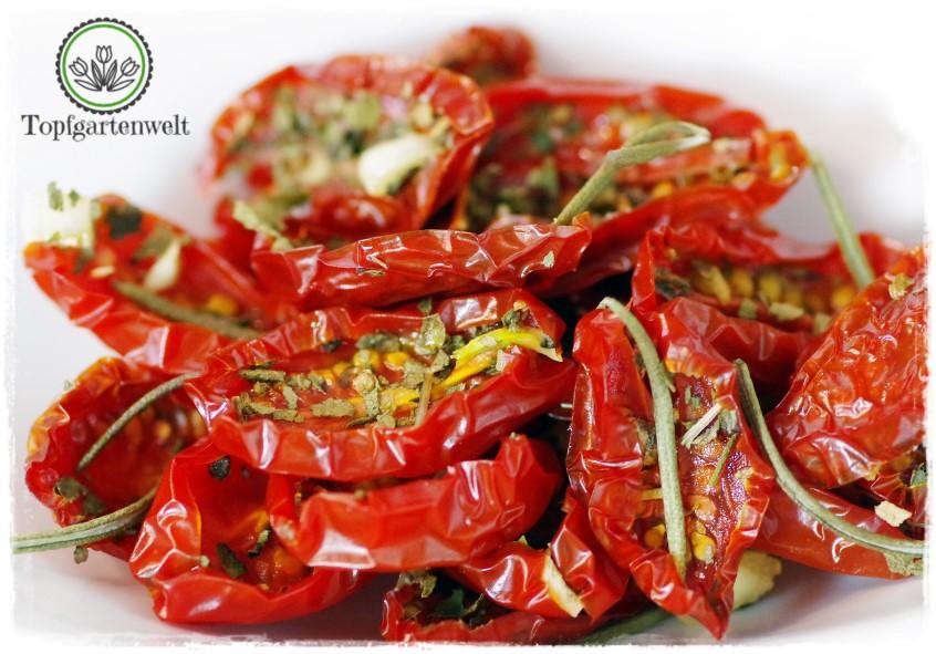 getrocknete Tomaten mit Basilikum, Oregano und Knoblauch - Foodblog Topfgartenwelt