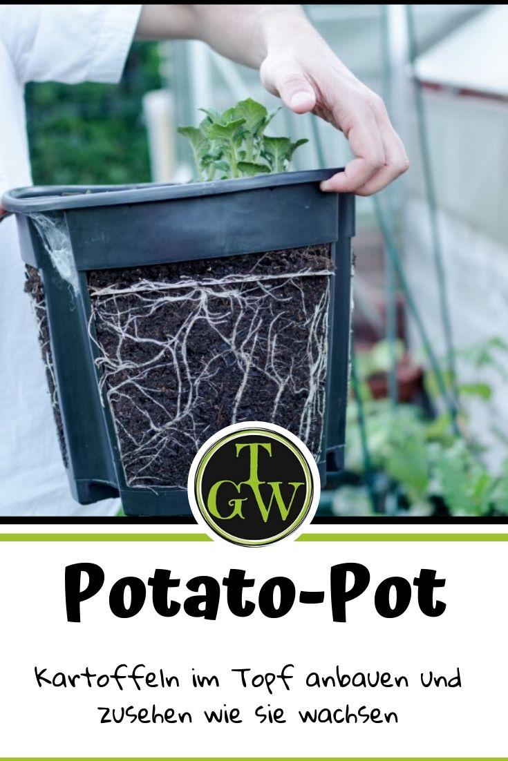 Potato Pot | Kartoffeln im Topf anbauen | passend für Garten, Terrasse und Balkon | Kartoffel Pflanztopf #potatopot #kartoffelpflanztopf #kartoffelnimtopf