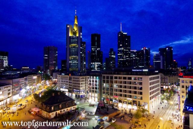 Mit dem Zug zur Frankfurter Buchmesse – Sightseeing in 4 Tagen!