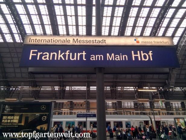 Ankunftshalle Hauptbahnhof Frankfurt am Main - Blog Topfgartenwelt