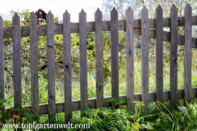 einfacher Gartenzaun aus Holz - Gartenblog Topfgartenwelt