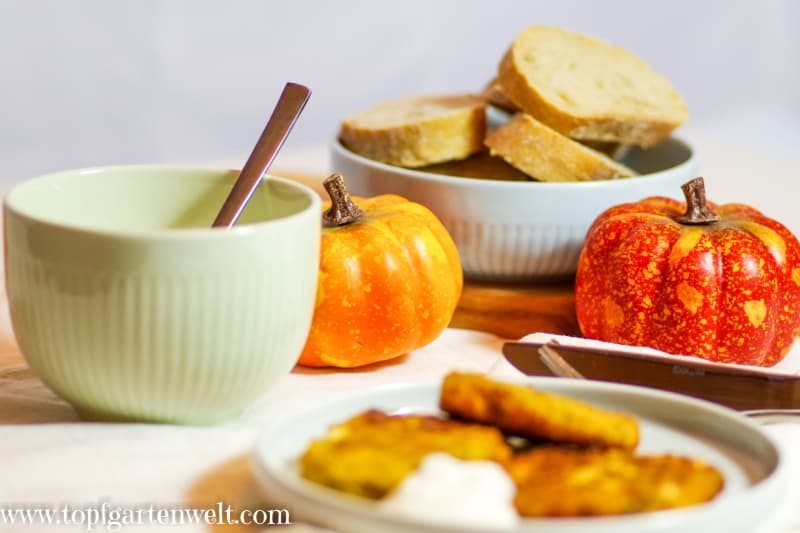 Kürbisrösti Kürbisfladen mit Feta - Foodblog Topfgartenwelt