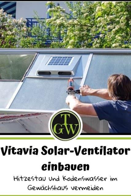 Einbau Vitavia Solar-Dachventilator - Hitzestau im Gewächshaus und Kondenswasser vermeiden - Gartenblog Topfgartenwelt