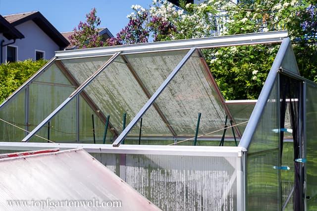 Ausbau der Doppelstegplatten - Gartenblog Topfgartenwelt