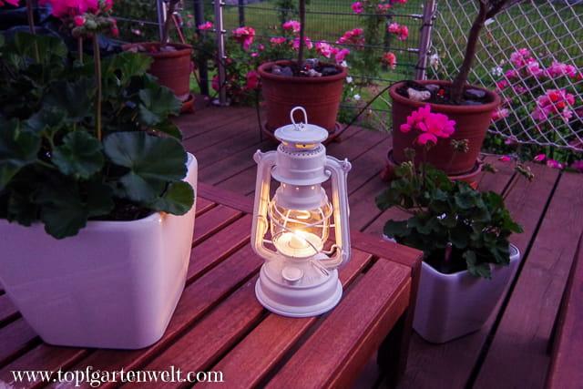 Feuerhand Baby Special 276 - stimmungsvolles Licht für Garten, Balkon, Terrasse - Gartenblog Topfgartenwelt