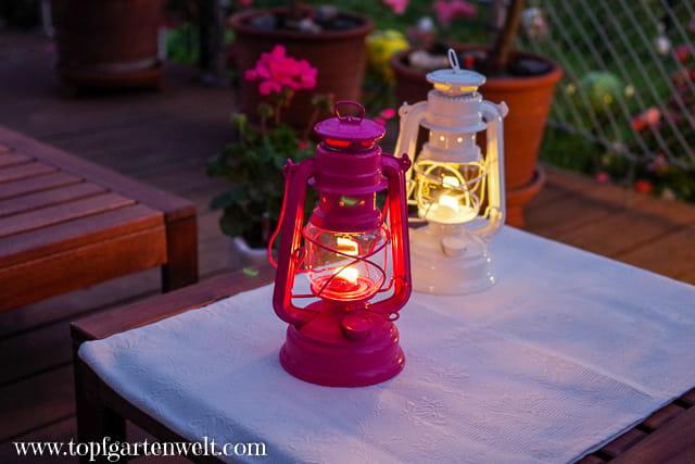 Feurhand Baby Special 276 - Ferien zu Hause - Gartenblog Topfgartenwelt