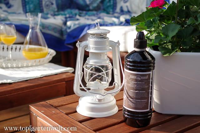 Urlaub auf Balkonien - Feuerhand Baby Special 276 - Sturmlaterne - Gartenblog Topfgartenwelt